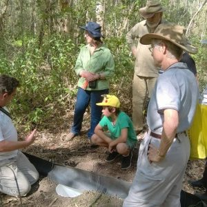 Our Bushcare Groups